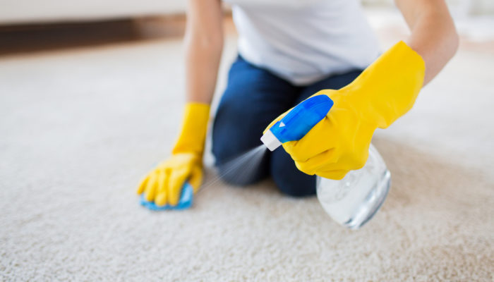 Caring For New Carpet: The Ultimate Guide